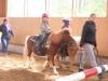 reiten2011_0036